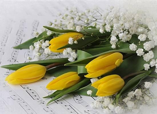 С 8 марта, милые женщины