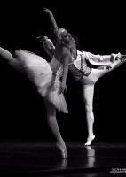 Международный день танца с «Лебединым Озером» на сцене