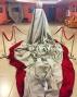 В галерее театра оперы и балета открывается новая выставка