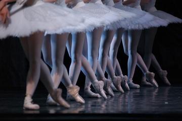 Звезды российского балета выступят на сцене Зимнего театра в Сочи